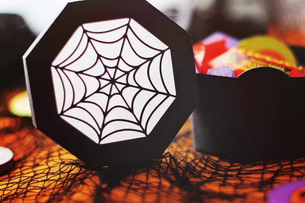 backlit close up the spider web shape on the lid